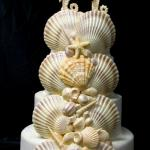 Monterey Bay Special Order xlarge scallop shells plus shell mixture plus seahorse topper